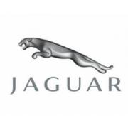 Carlig Remorcare Jaguar